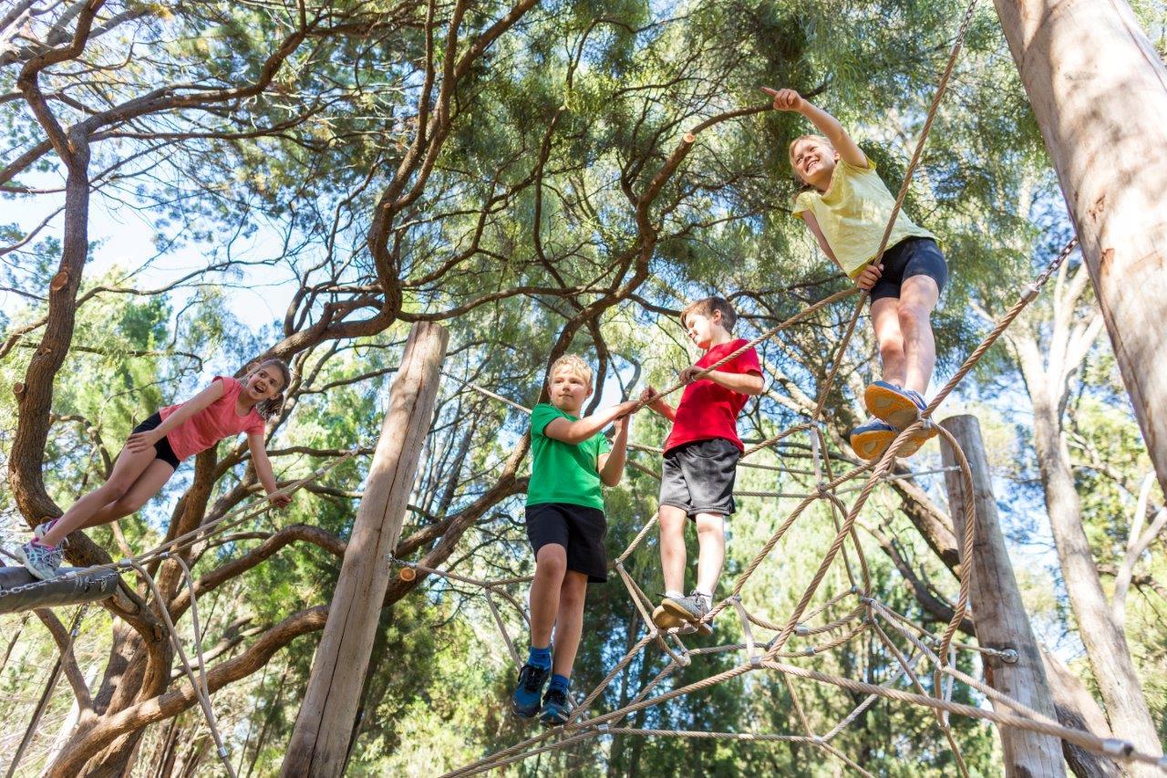 Rio Tinto Naturescape Kings Park Perth Tourist Centre